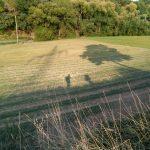 Wanderer der franziskanischen Wanderung des Franziskuskreises 2018 nach Hofheim. Schatten mit Baum und Masten auf Feld